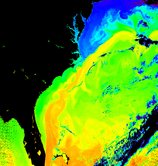 Terra MODIS image, the Gulf Stream
