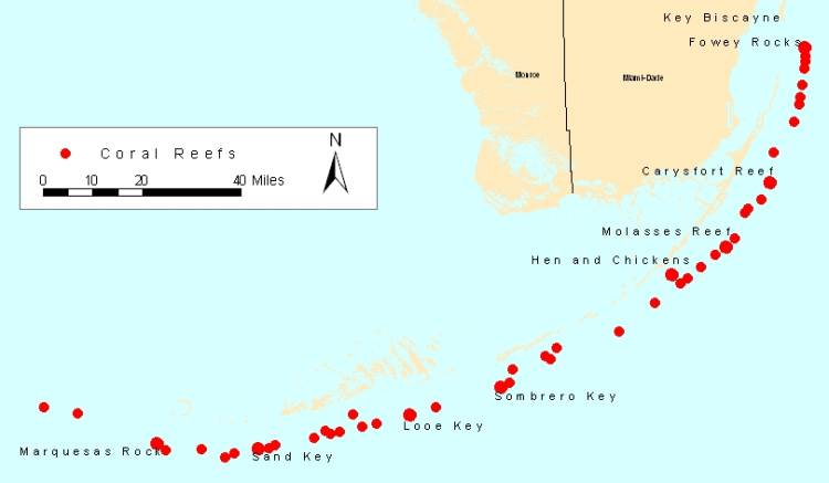 Map Of The Keys In Florida.Coral Reefs In The Florida Keys