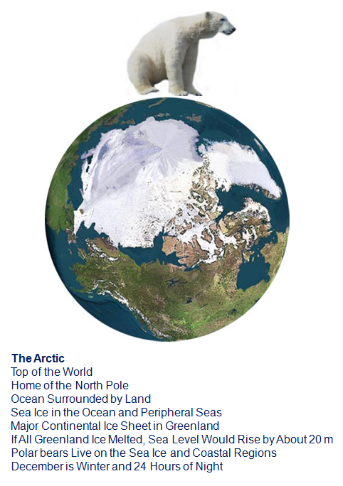 The Arctic - Home Of The Polar Bear