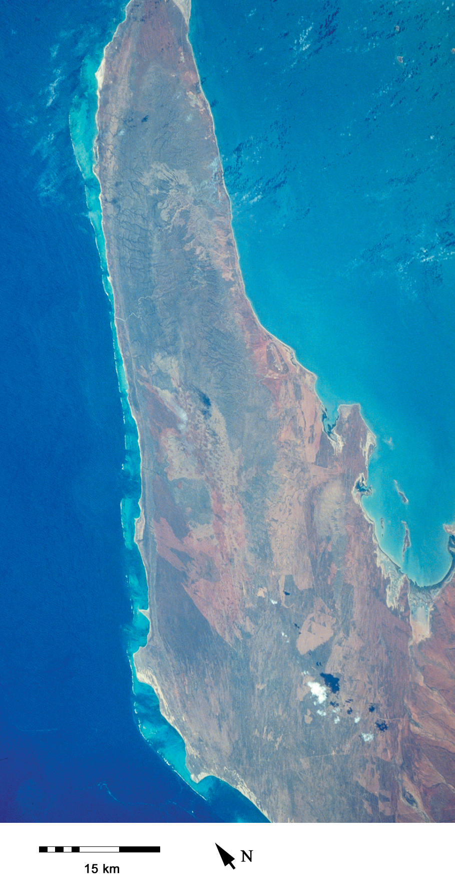 The North West Cape is bordered by Australia's longest fringing reef, the Ningaloo Reef