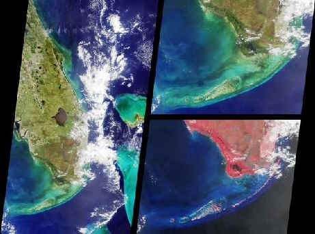 Florida Everglades From Space